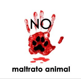 no-maltrato-animal